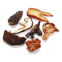 European Mushroom Blend