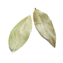 Bay Leaves, Whole Turkish